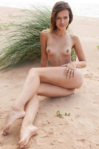 Already naked brunette puts up her legs giving us a nice view on her meaty pussy